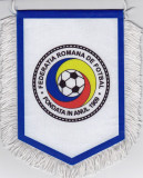 Fanion Federatia de Fotbal din Romania