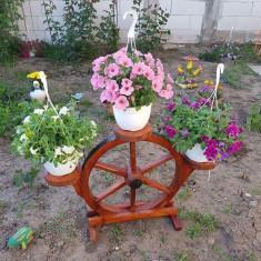 Decorațiuni pentru grădina - Trambulina copii