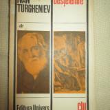 Destelenire - Ivan Turgheniev