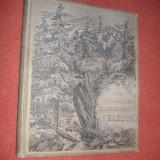 Jacob von Falke - Castelul Regal Peles (editia in limba germana) - 1893