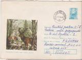 bnk ip Intreg postal 1975 -  circulat - fauna - Cerbul carpatin