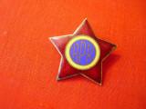Emblema  coifura,   cuc , RPR
