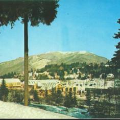CPI (B8700) CARTE POSTALA - PREDEAL - Carte Postala Transilvania dupa 1918, Necirculata, Fotografie