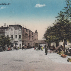 LUGOJ, PIATA IZABELLA, ZI DE TARG, CARUTE, VANZATORI - Carte Postala Banat dupa 1918, Necirculata, Printata