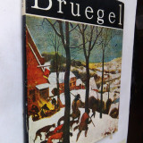 022. Elena Victoria Jiquidi - Album Pieter Bruegel. - Album Arta