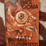 PATIMILE DUPA PITESTI-PAUL GOMA - Carte Politica