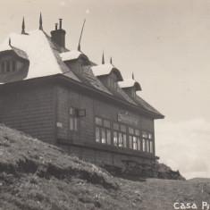 SINAIA, CASA PISCUL CAINELUI SINAIA FOTOGRAFIE AGFA - Carte Postala Muntenia dupa 1918, Necirculata