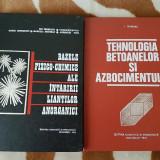 BAZELE INTARIRII LIANTILOR/TEHNOLOGIA BETOANELOR-ION TEOREANU - Carte Chimie