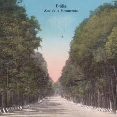BRAILA ALEA DE LA MONUMENTU CIRC. 1915 LIBRARIA SI PAPETARIA N. CIUNTU BRAILA - Carte Postala Muntenia 1904-1918, Circulata, Printata
