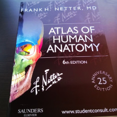 NOU Atlas of Human Anatomy F. H. Netter 6th ed./ Atlas Netter ed.6 Engleza