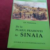 GH NISTORESCU - DE LA PLAIUL PRAHOVEI LA SINAIA 2004 - Istorie