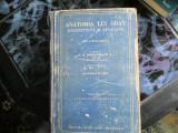 Anatomia lui gray  vol lll, Alta editura