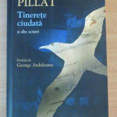 Tinerete ciudata si alte scrieri - Dinu Pillat, Humanitas