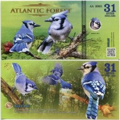 ATLANTIC FOREST- 31 AVES 2017- UNC!!