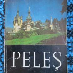 Album MUZEUL PELES (SINAIA - 1972 - NUMEROASE POZE!!!) - Album Muzee
