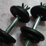 Set gantere 20 kg (2x10 kg), reglabile