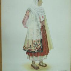 Dolj Oltenia costum popular taranca ie fusta opinci acoperamantul capului - Carte Arta populara