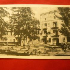 Ilustrata Valcele-Bai, Aleea Vila Ferency 1937, Ed.Bacania Parcului R.Izsak - Carte Postala Transilvania dupa 1918, Necirculata, Printata