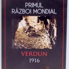 PRIMUL RAZBOI MONDIAL, VERDUN 1916 de WILLIAM MARTIN, 2017 - Istorie