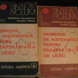 PROBLEME DE MATE- TREAPTA 1 SI 2-LICEU- 2 VOL-GH. CALUGARITA., V. MANGU- - Carte Matematica