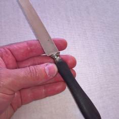 Cutit cu lama de argint 800 Franta si maner lemn (abanos)