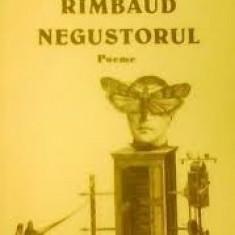 Mircea dinescu rimbaud - Carte poezie