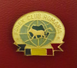 Insigna Forex Club Romania