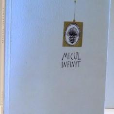 MICUL INFINIT de DOMINIQUE LOREAU, 2015 - Carte in alte limbi straine