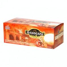 GanoCafe Mocha