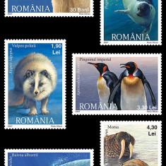 2007 - Fauna polara, serie neuzata