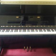 Pianina Perzina_Boem Club Pianos
