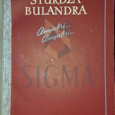 AMINTIRI AMINTIRI - LUCIA STURDZA BULANDRA - Istorie