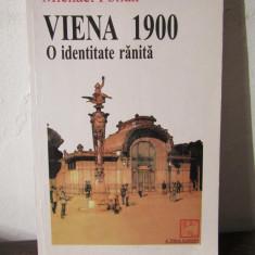 Viena 1900 o identitate ranita M. Pollak - Istorie