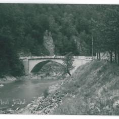 4184 - Gorj, DEFILEUL JIULUI, bridge - old postcard, real PHOTO - used - 1931 - Carte Postala Oltenia dupa 1918, Circulata, Fotografie