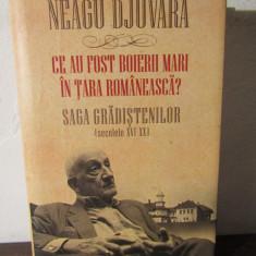 CE-AU FOST BOIERII MARI IN TARA ROMANEASCA?-NEAGU DJUVARA - Istorie
