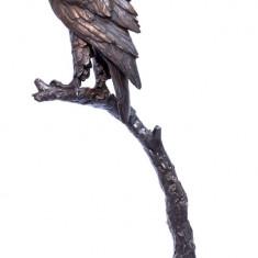 VULTUR- STATUETA DIN BRONZ PE SOCLU DIN MARMURA YY-80 - Metal/Fonta, Statuete