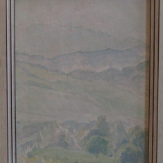 MARIA CIURDEA STEURER-PEISAJ, Peisaje, Ulei, Altul