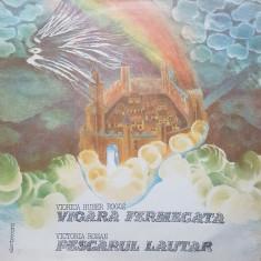 VIOARA FERMECATA - Huber * PESCARUL LAUTAR - Roman (DISC VINIL)