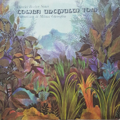 COLIBA UNCHIULUI TOM - Harriet Beecher Stowe - DISC VINIL - Muzica pentru copii