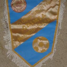 Fanion fotbal Chimia Ramnicu Valcea