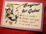 Ilustrata comica - Pisica schior - Reclama turistica, Circulata, Printata