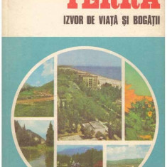 Terra - Izvor de viata si bogatii - Autor(i): Claudiu Giurcaneanu - Ghid de calatorie