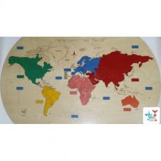 Puzzle Altele Harta Lumii