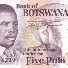 Bancnota Botswana 5 Pula (1992) - P11 UNC - bancnota africa