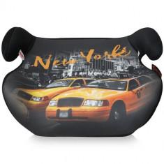 Inaltator Auto Teddy 2016 New York