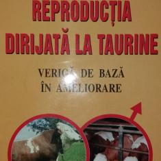 GHEORGHE LICIU - REPRODUCTIA DIRIJATA LA TAURINE