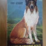 N6 Lassie Se-ntoarce Acasa - Eric Knight (prezinta niste pagini lipite invers) - Carte de aventura