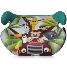 Inaltator Auto Teddy 2016 Jungle Race