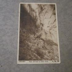 cp valea ialomitei in cheile orzea album 31