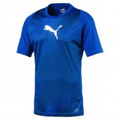 Tricou Puma ftblTRG Graphic Shirt cod 655355-50 - Tricou barbati Puma, Marime: XS, S, M, L, XL